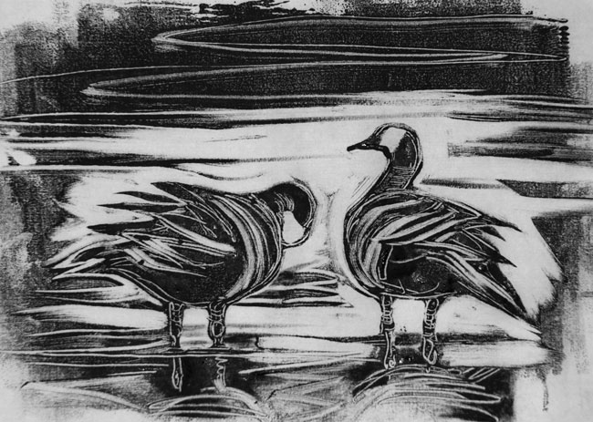Wild Geese Drawing Canada-geese