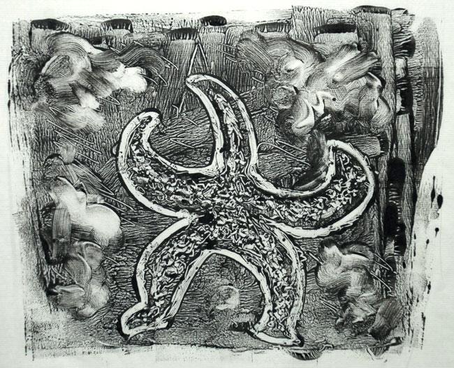 Ann-starfish-web