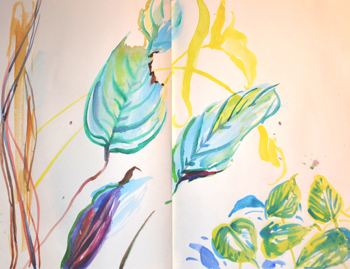 Leaves, Butterfly House, watercolour