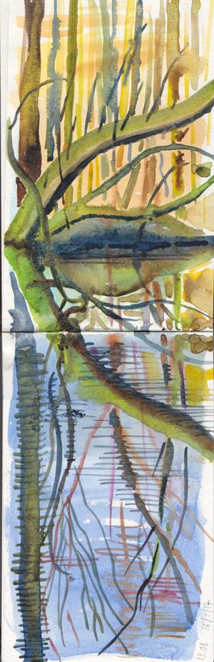 Wet winter woods, watercolour