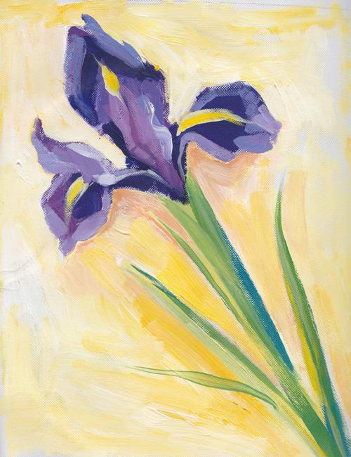Iris-acrylic-sketch